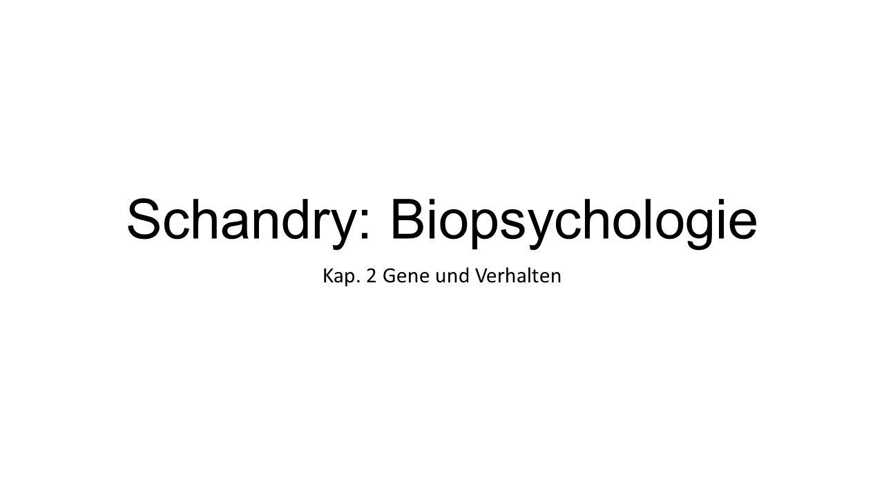 Schandry: Biopsychologie