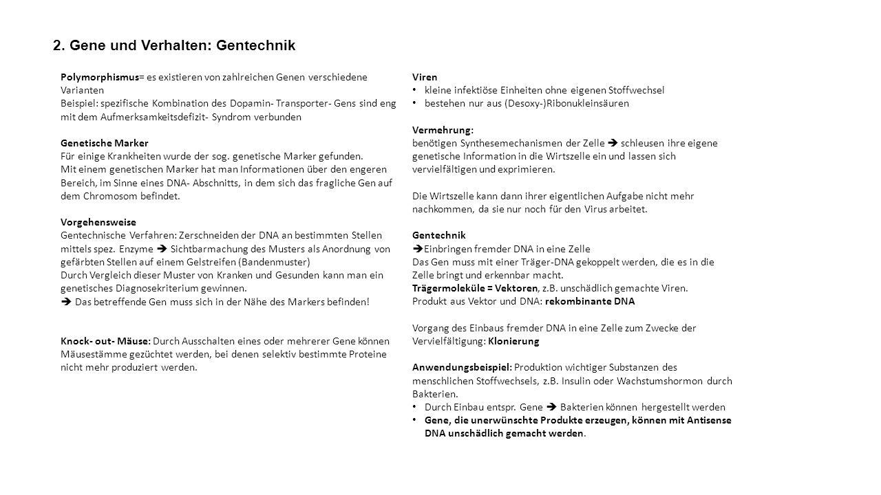 2. Gene und Verhalten: Gentechnik