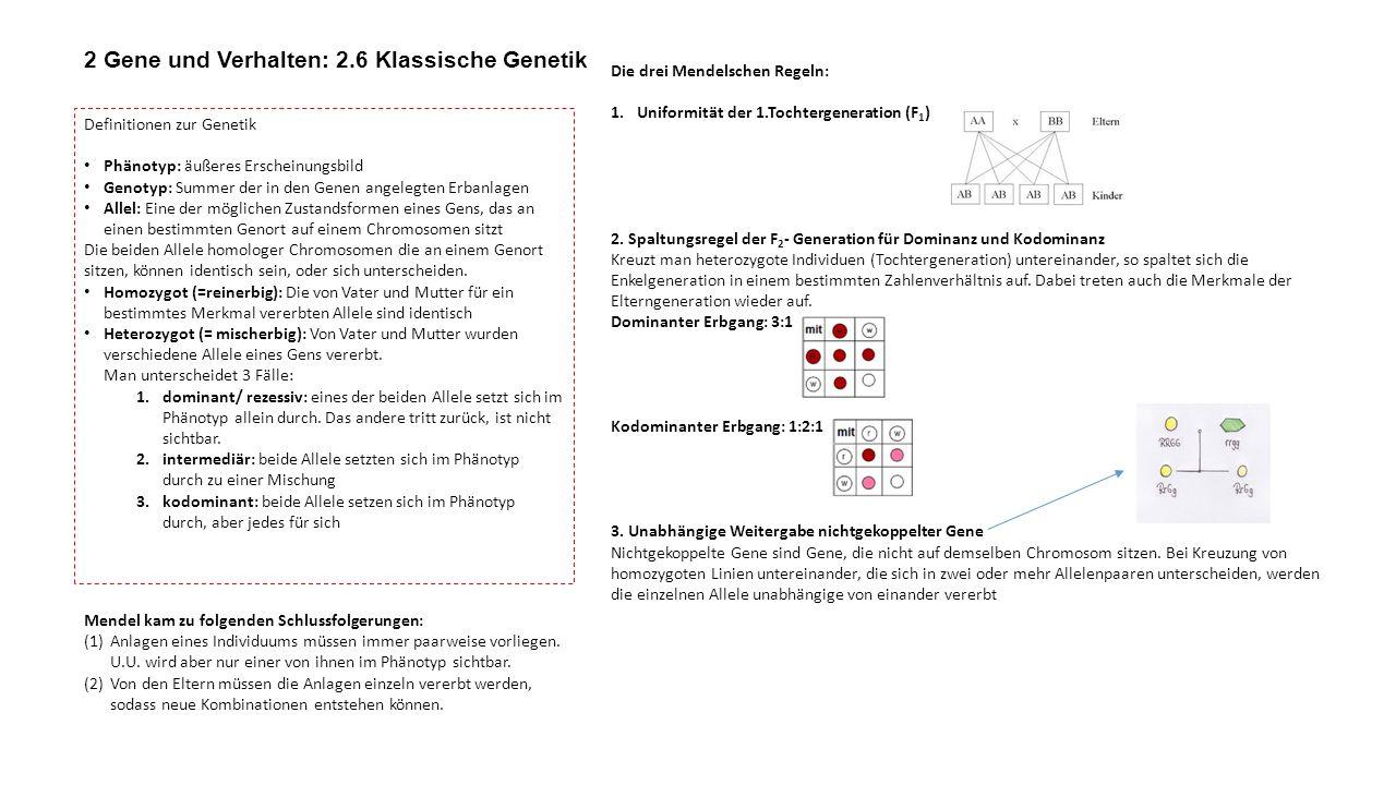 2 Gene und Verhalten: 2.6 Klassische Genetik
