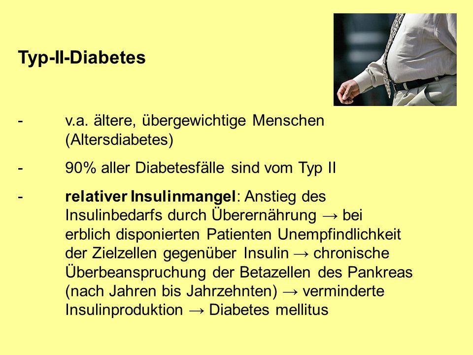 Typ-II-Diabetes - v.a. ältere, übergewichtige Menschen (Altersdiabetes) - 90% aller Diabetesfälle sind vom Typ II.