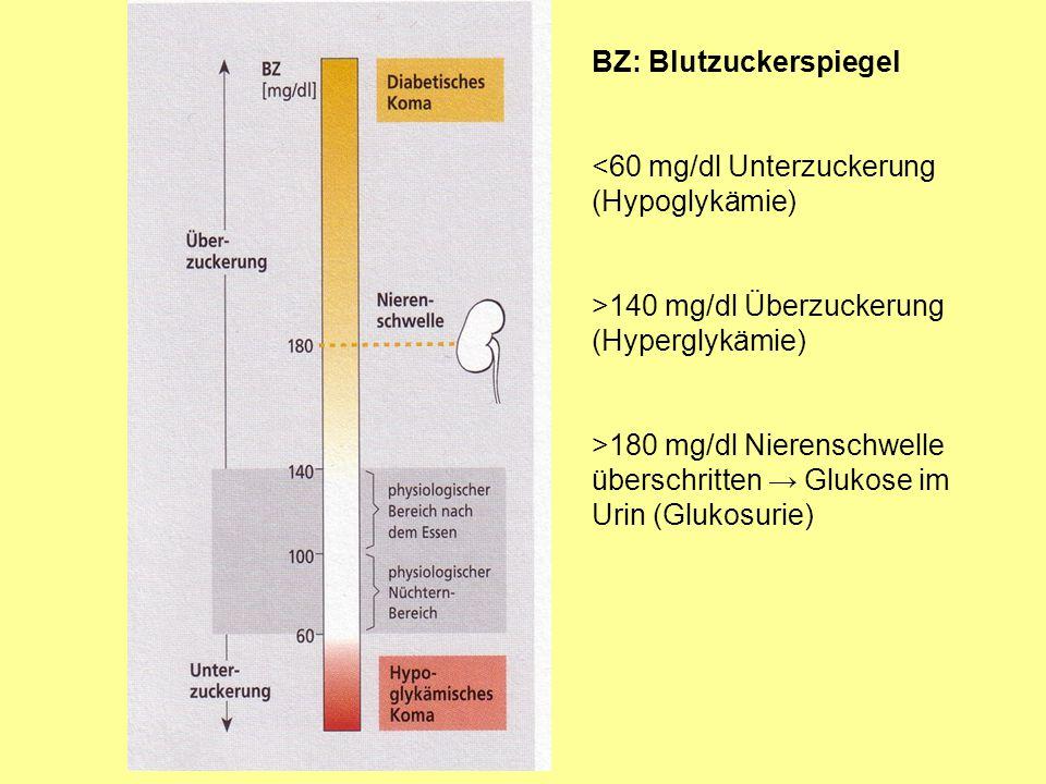 BZ: Blutzuckerspiegel
