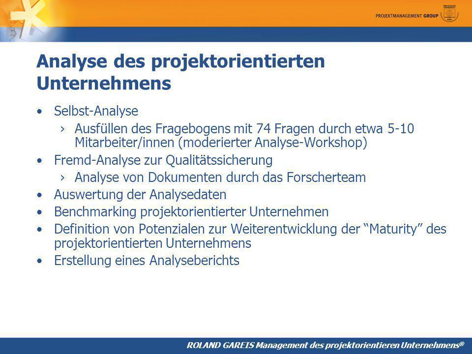 Analyse des projektorientierten Unternehmens