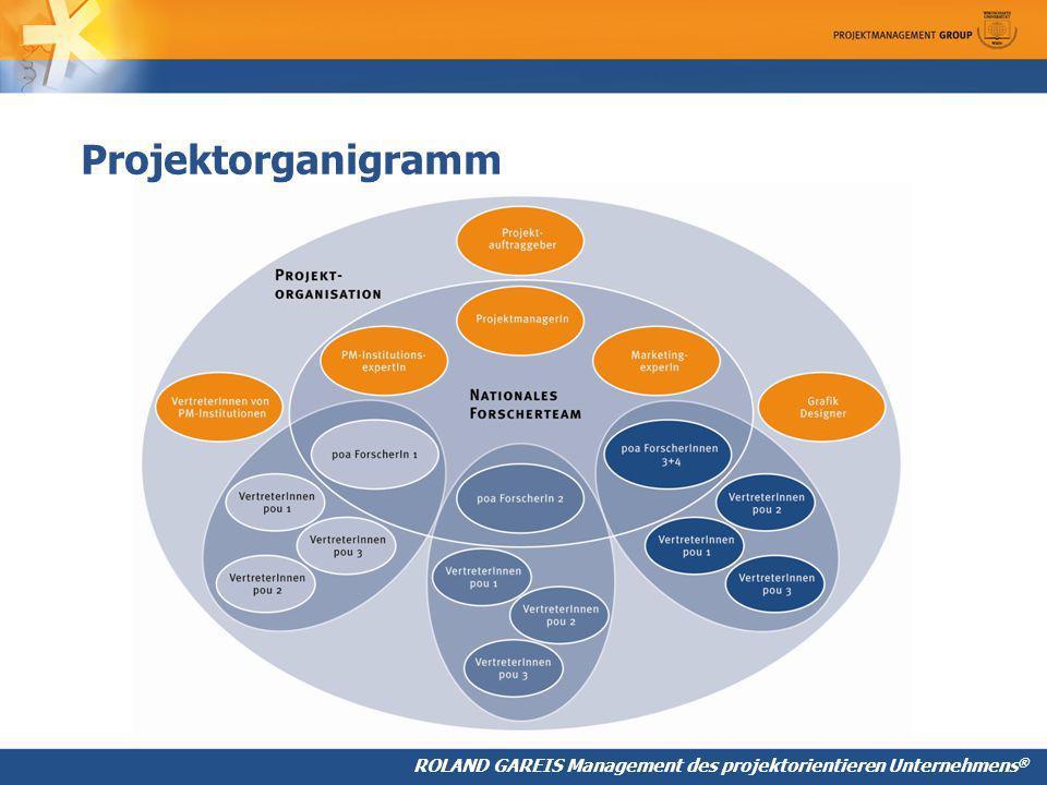 Projektorganigramm