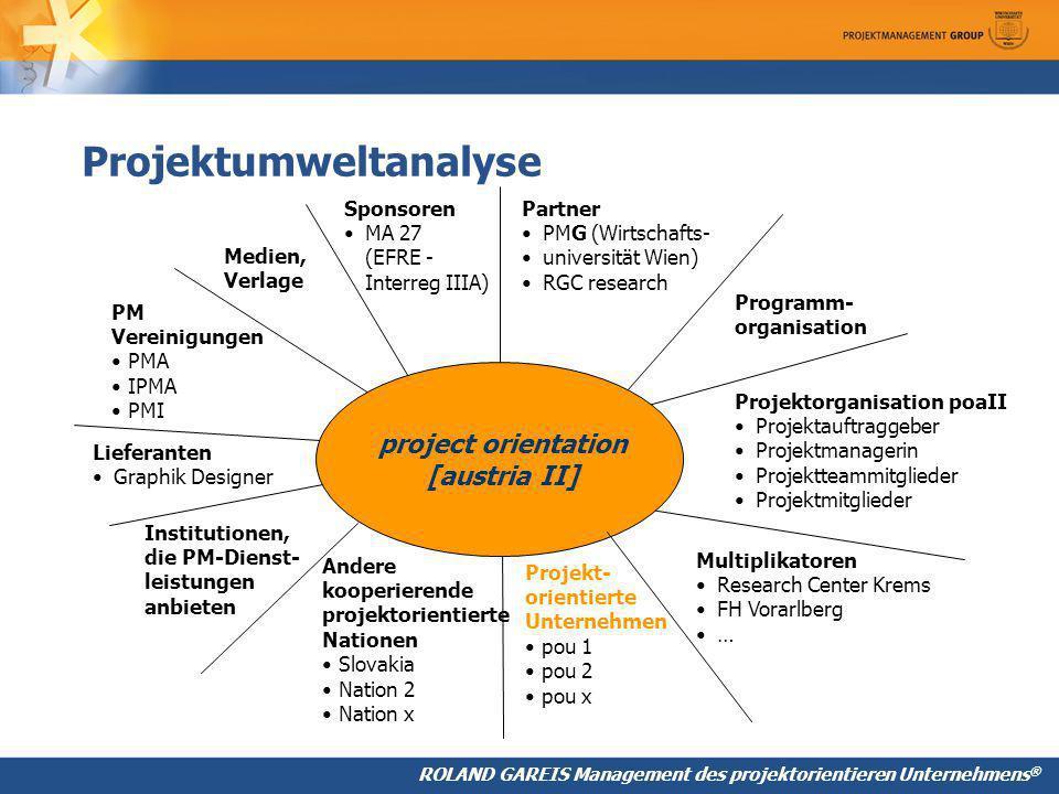 Projektumweltanalyse