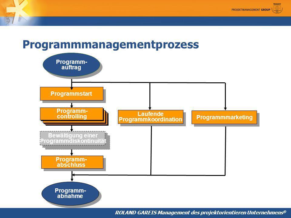 Programmmanagementprozess