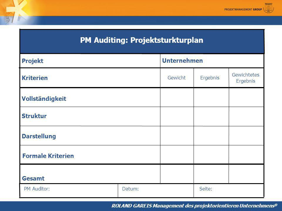 PM Auditing: Projektsturkturplan