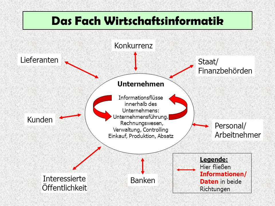 Das Fach Wirtschaftsinformatik