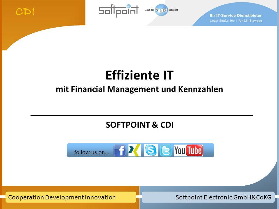 Effiziente IT mit Financial Management und Kennzahlen