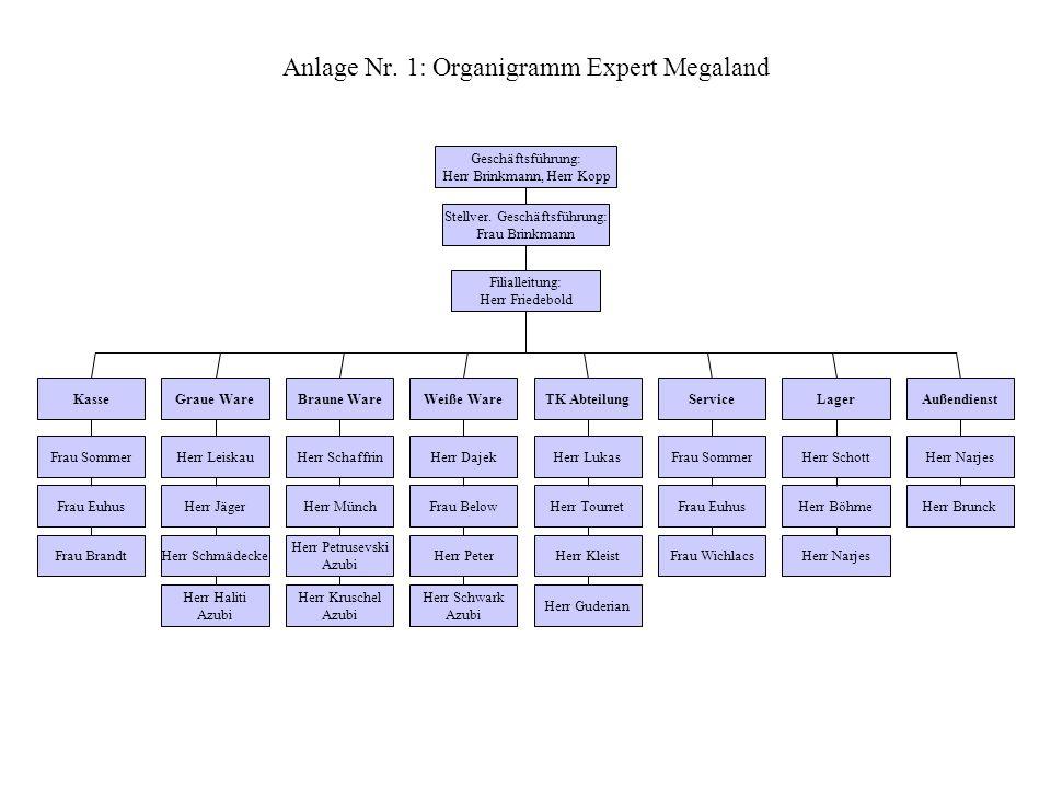 Anlage Nr. 1: Organigramm Expert Megaland
