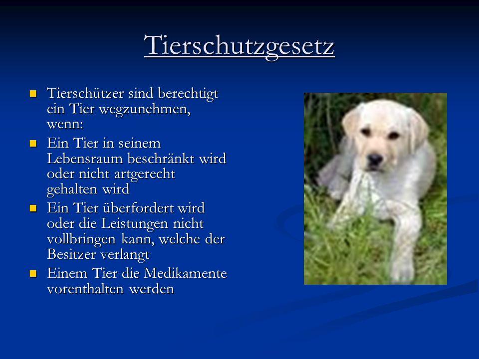 Tierschutzgesetz Tierschützer sind berechtigt ein Tier wegzunehmen, wenn: