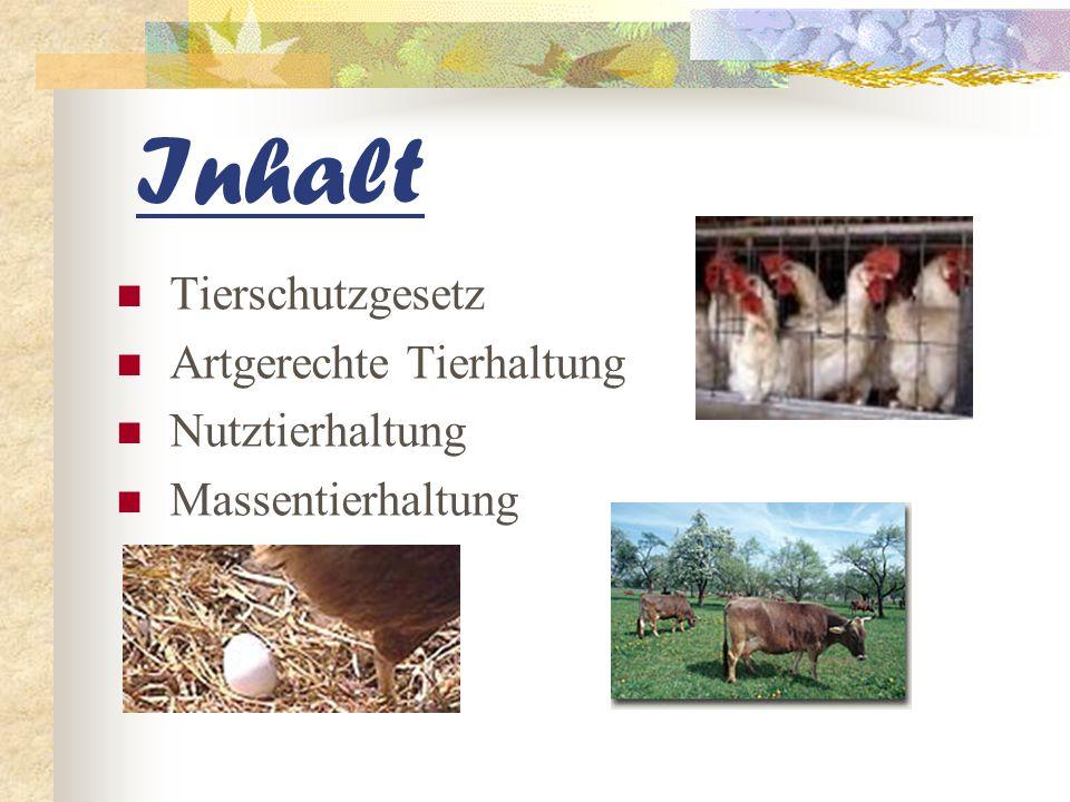 Inhalt Tierschutzgesetz Artgerechte Tierhaltung Nutztierhaltung