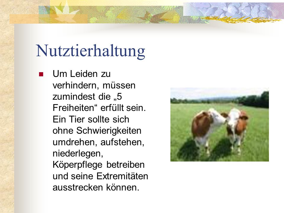 Nutztierhaltung