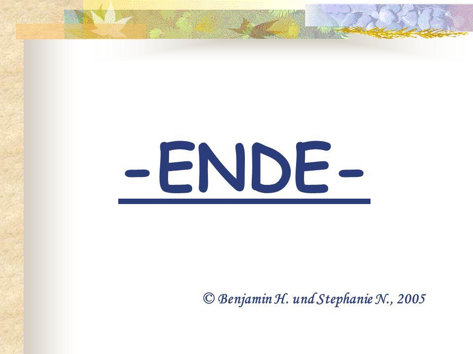 -ENDE- © Benjamin H. und Stephanie N., 2005