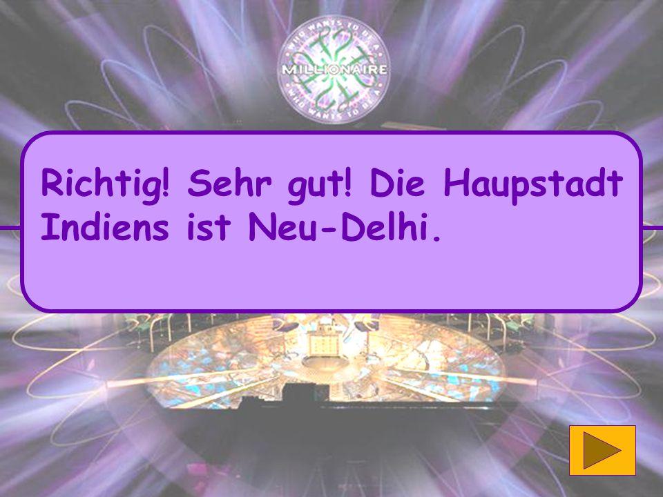 Richtig! Sehr gut! Die Haupstadt Indiens ist Neu-Delhi.