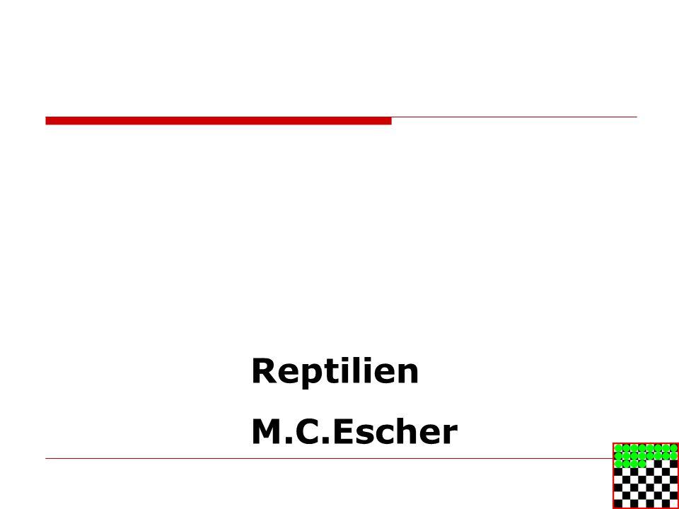 Reptilien M.C.Escher