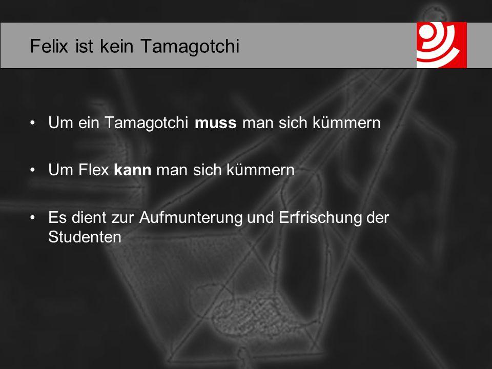 Felix ist kein Tamagotchi