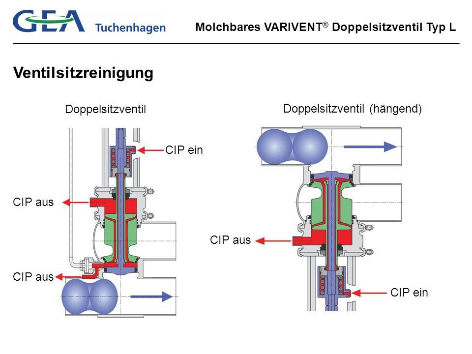 Ventilsitzreinigung Doppelsitzventil Doppelsitzventil (hängend)