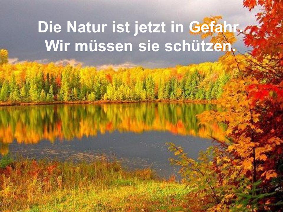 Die Natur ist jetzt in Gefahr. Wir müssen sie schützen.