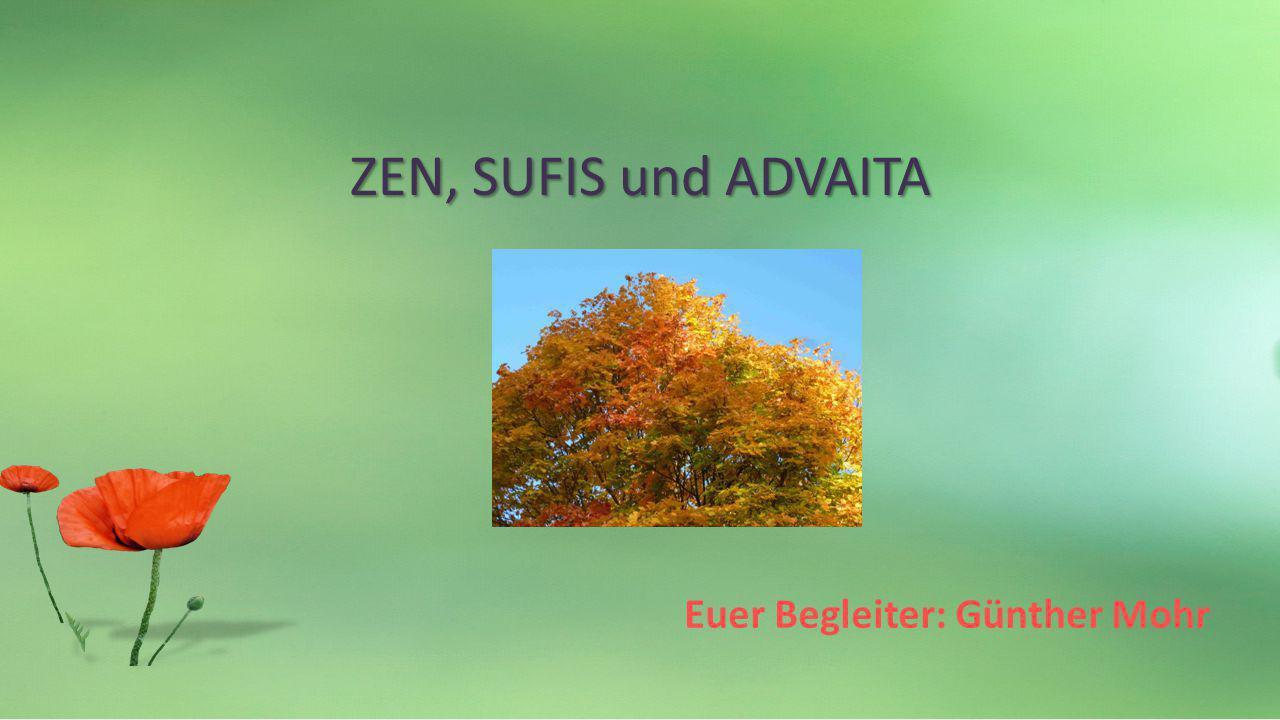 Euer Begleiter: Günther Mohr