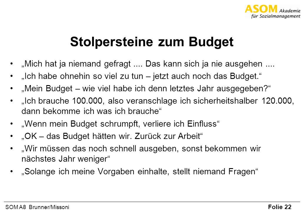 Stolpersteine zum Budget
