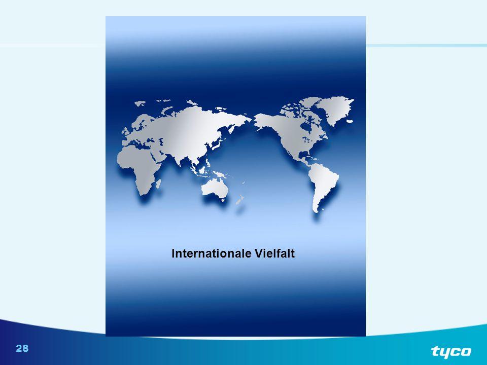 Annahmen über Probleme durch internationale Vielfalt