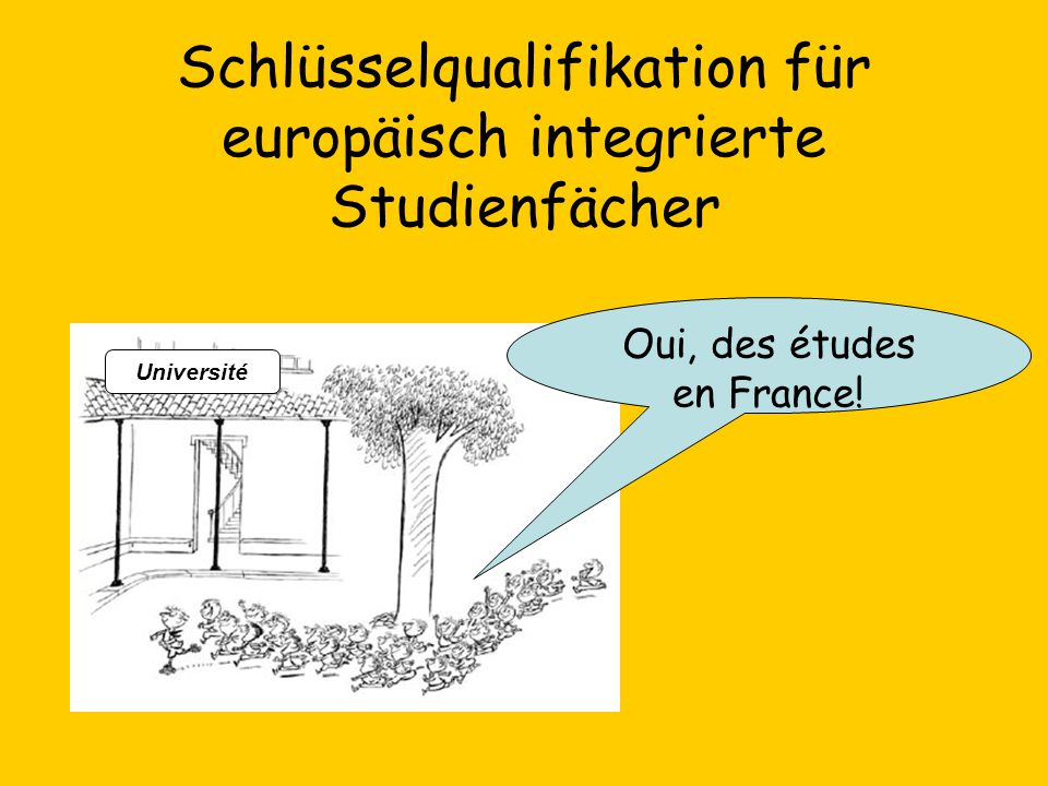 Schlüsselqualifikation für europäisch integrierte Studienfächer