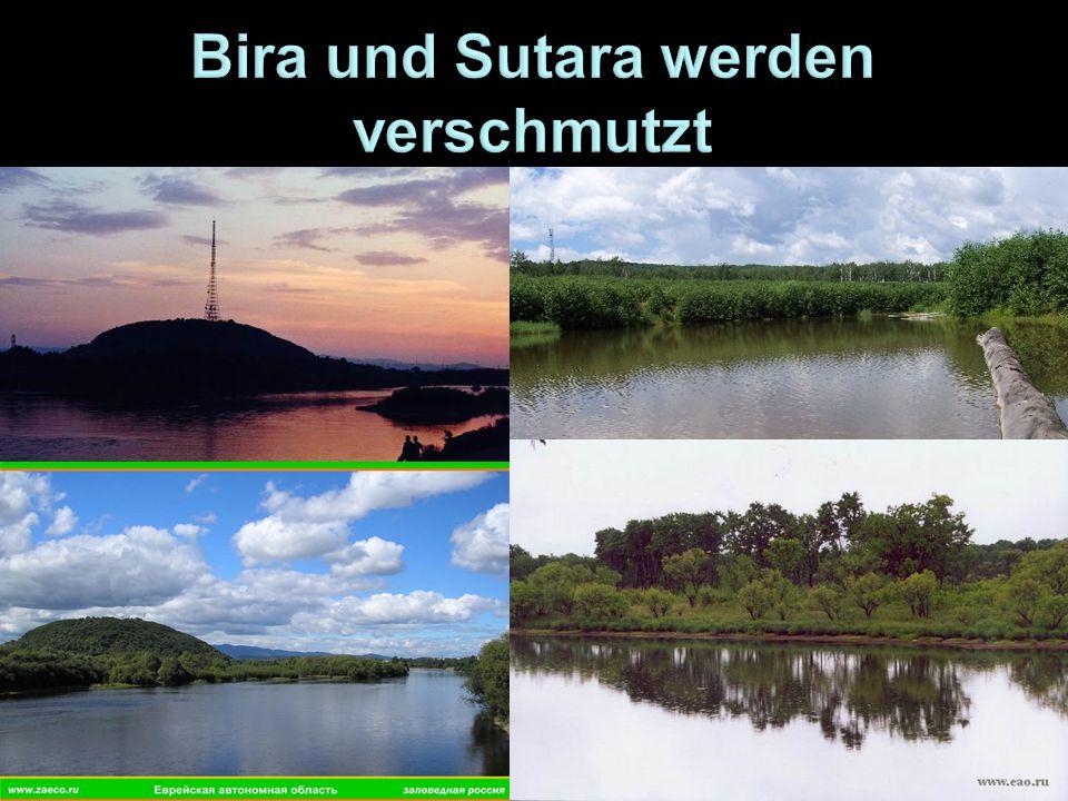 Bira und Sutara werden verschmutzt