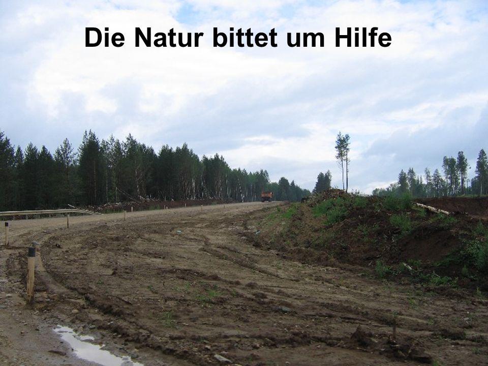Die Natur bittet im Hilfe