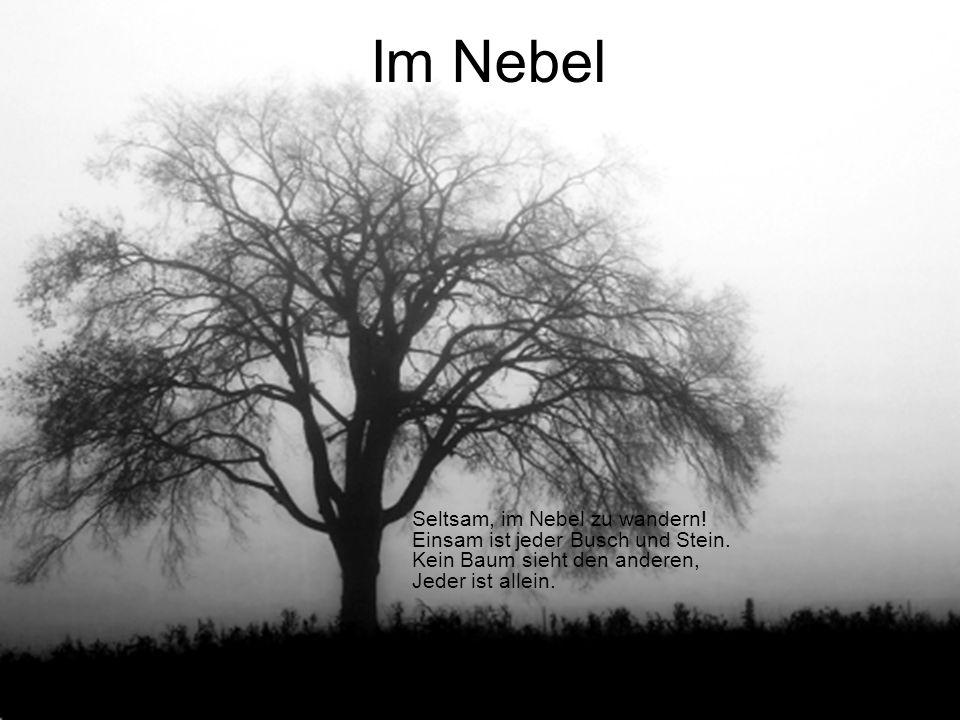 Im Nebel Seltsam, im Nebel zu wandern. Einsam ist jeder Busch und Stein.
