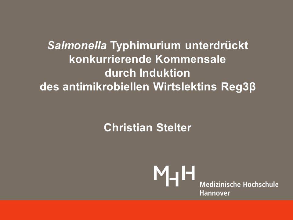 Salmonella Typhimurium unterdrückt konkurrierende Kommensale