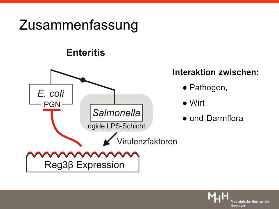 Zusammenfassung Interaktion zwischen: ● Pathogen, ● Wirt