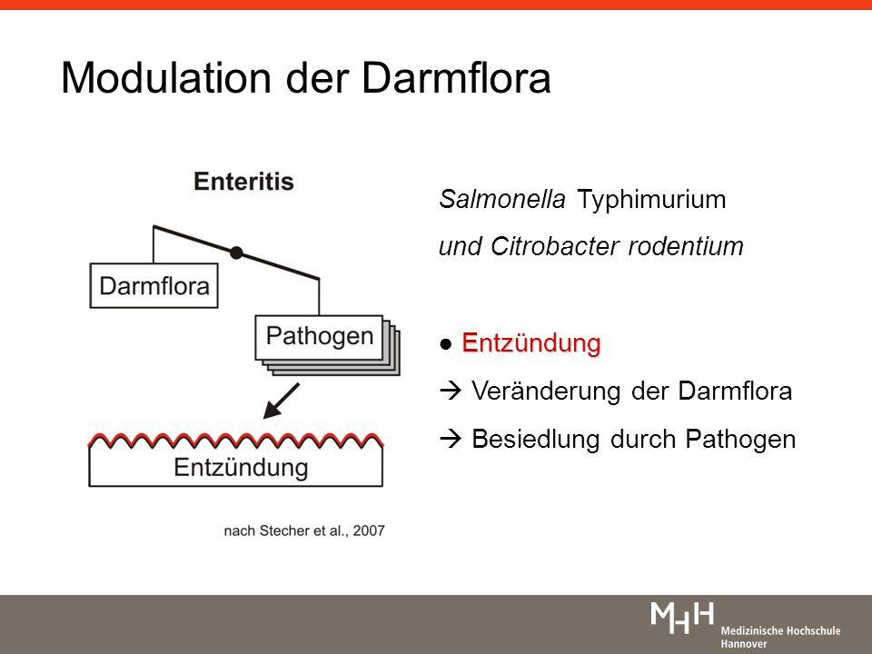 Modulation der Darmflora