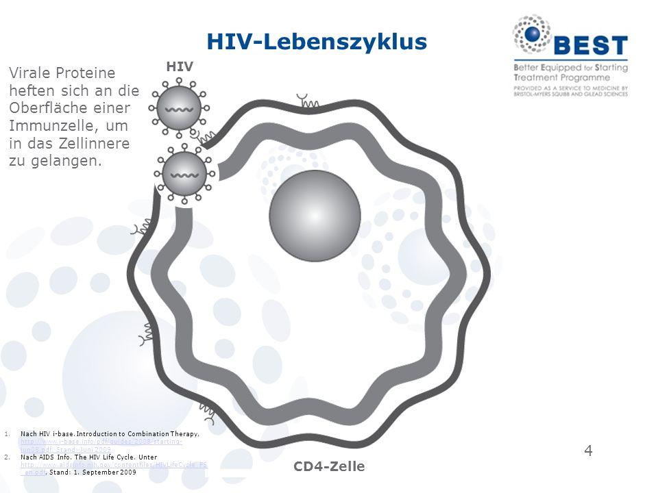 HIV-Lebenszyklus HIV. Virale Proteine heften sich an die Oberfläche einer Immunzelle, um in das Zellinnere zu gelangen.