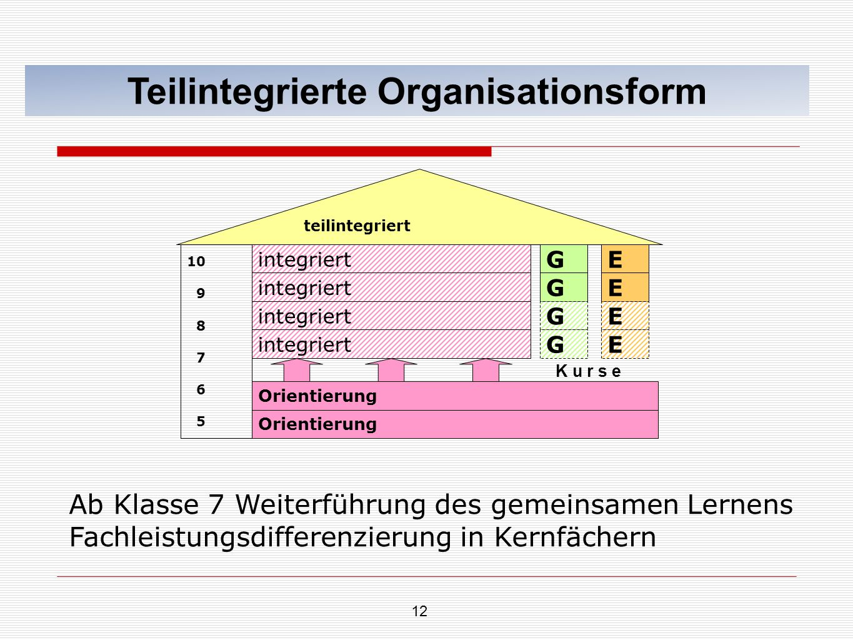 Teilintegrierte Organisationsform