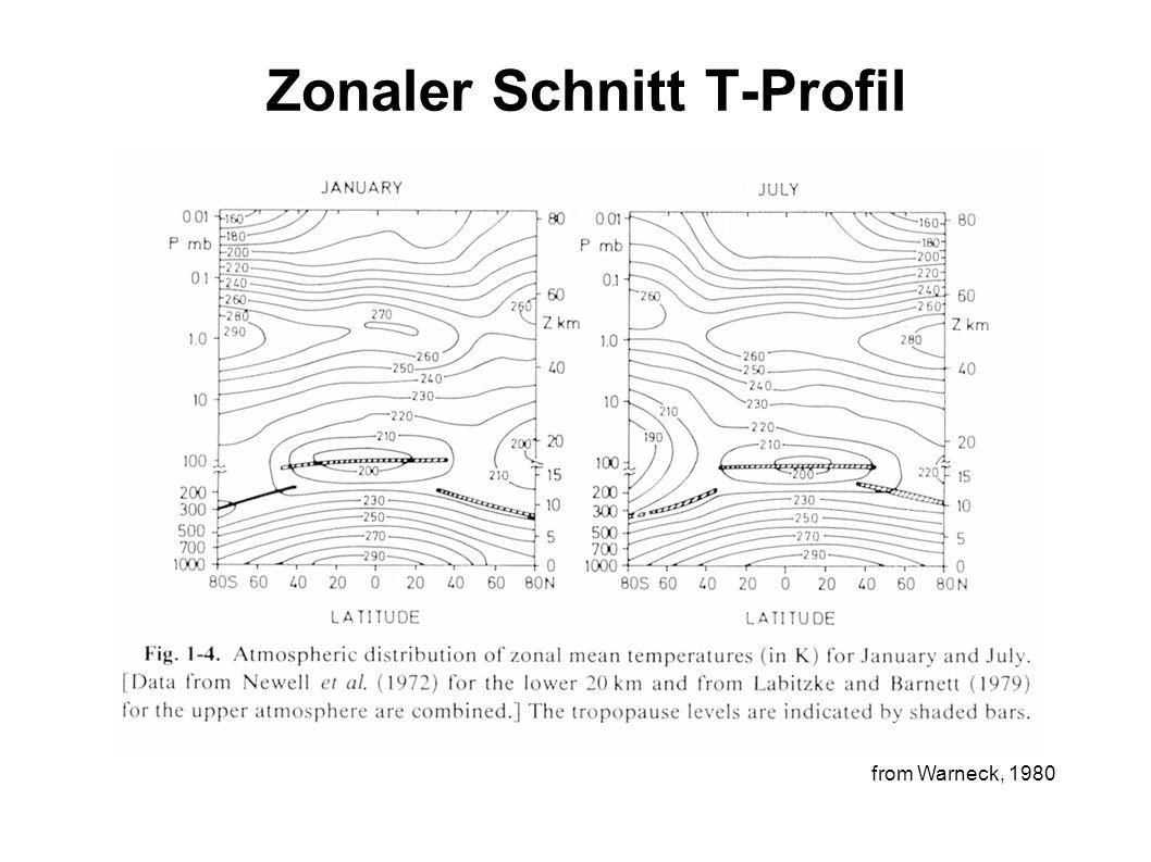 Zonaler Schnitt T-Profil