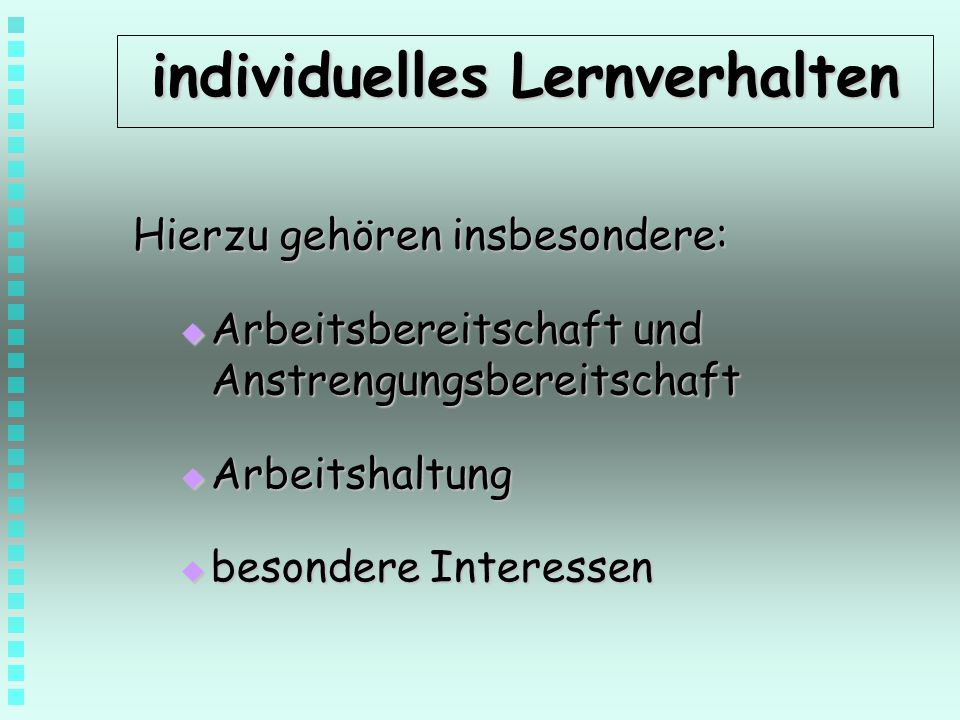 individuelles Lernverhalten