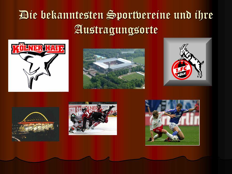 Die bekanntesten Sportvereine und ihre Austragungsorte