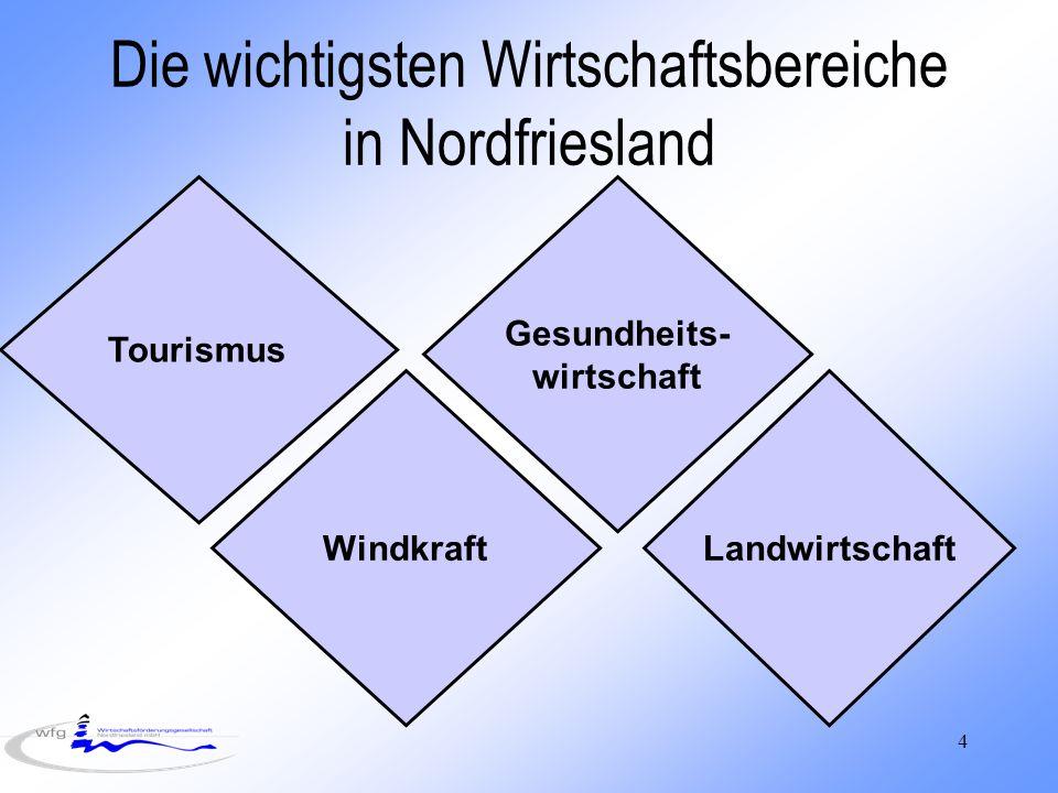 Die wichtigsten Wirtschaftsbereiche in Nordfriesland