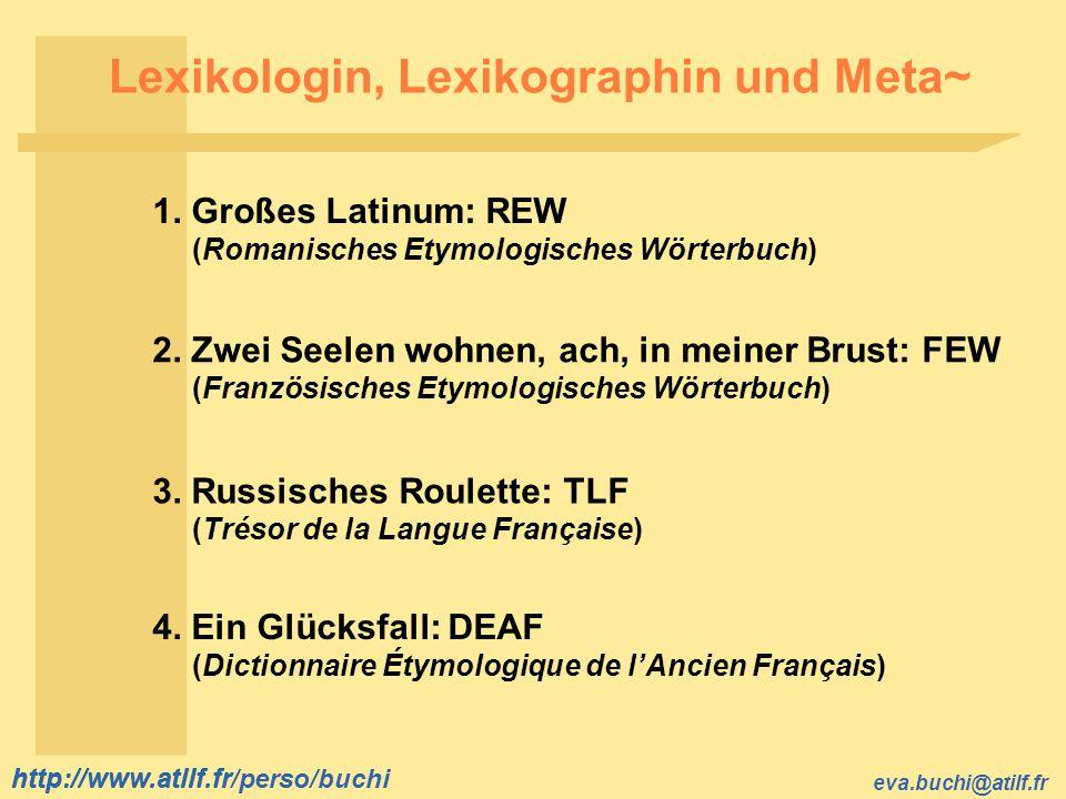 Lexikologin, Lexikographin und Meta~