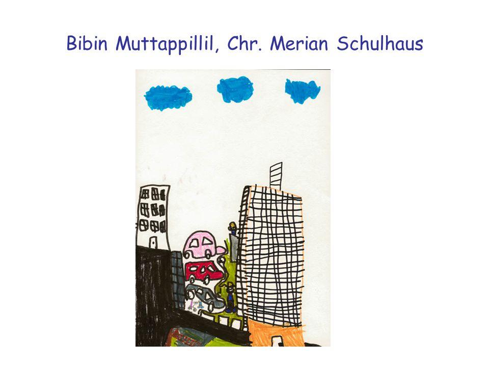 Bibin Muttappillil, Chr. Merian Schulhaus