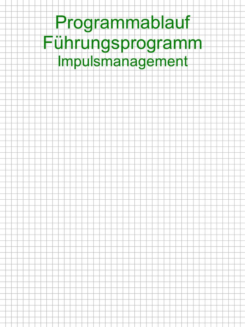 Programmablauf Führungsprogramm Impulsmanagement