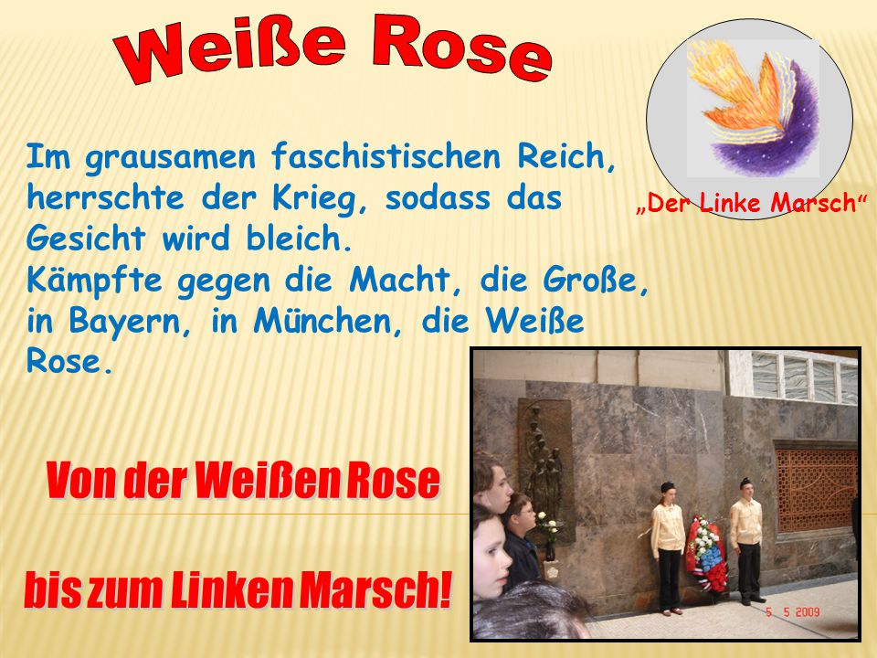 Weiße Rose Im grausamen faschistischen Reich,