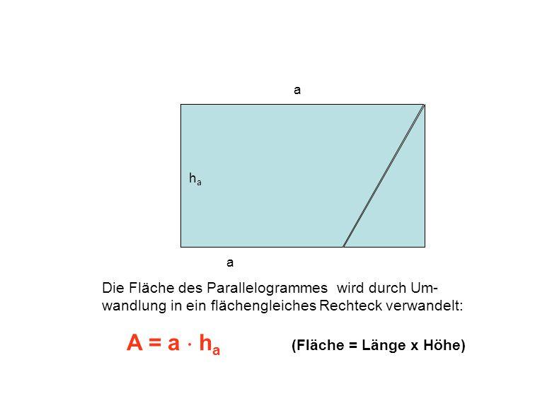 A = a  ha (Fläche = Länge x Höhe)