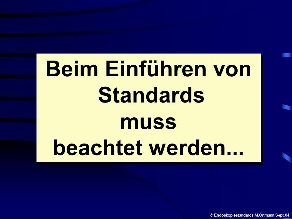 Beim Einführen von Standards muss beachtet werden...