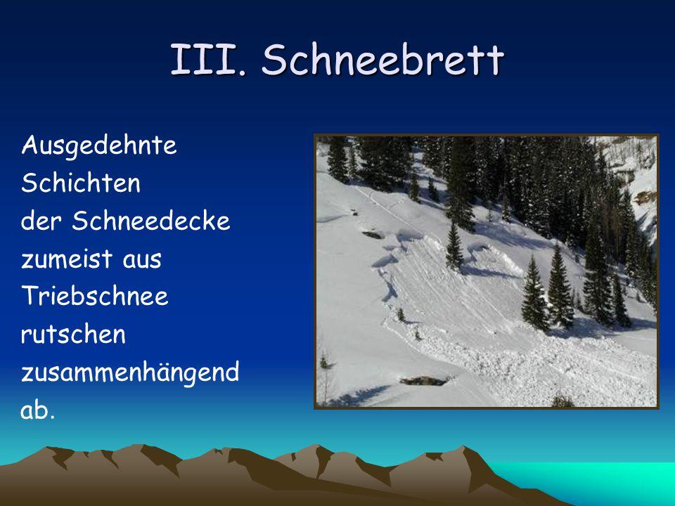 III. Schneebrett Ausgedehnte Schichten der Schneedecke zumeist aus