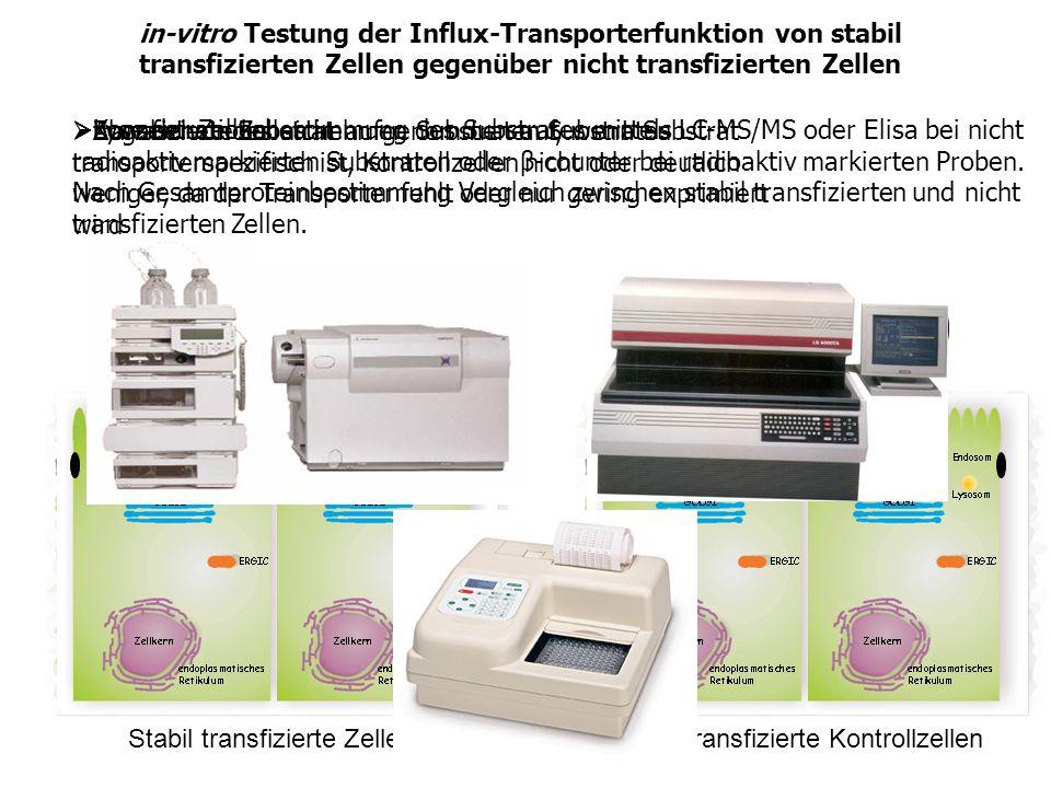in-vitro Testung der Influx-Transporterfunktion von stabil transfizierten Zellen gegenüber nicht transfizierten Zellen