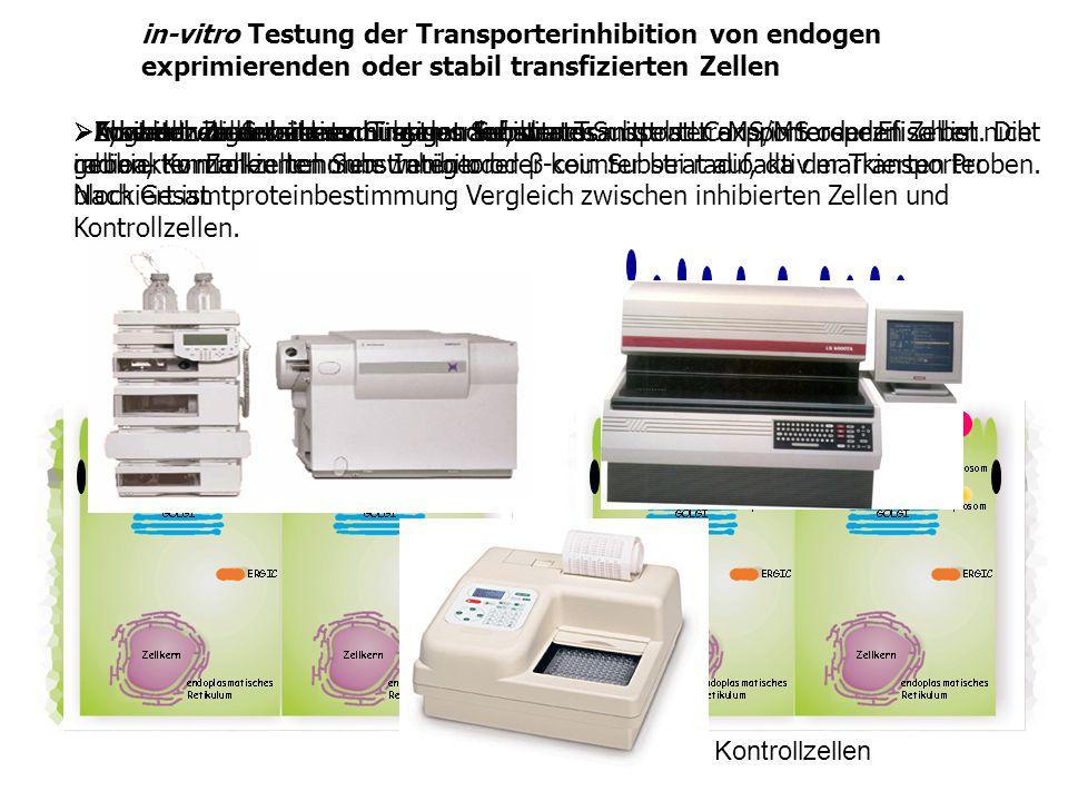 in-vitro Testung der Transporterinhibition von endogen exprimierenden oder stabil transfizierten Zellen
