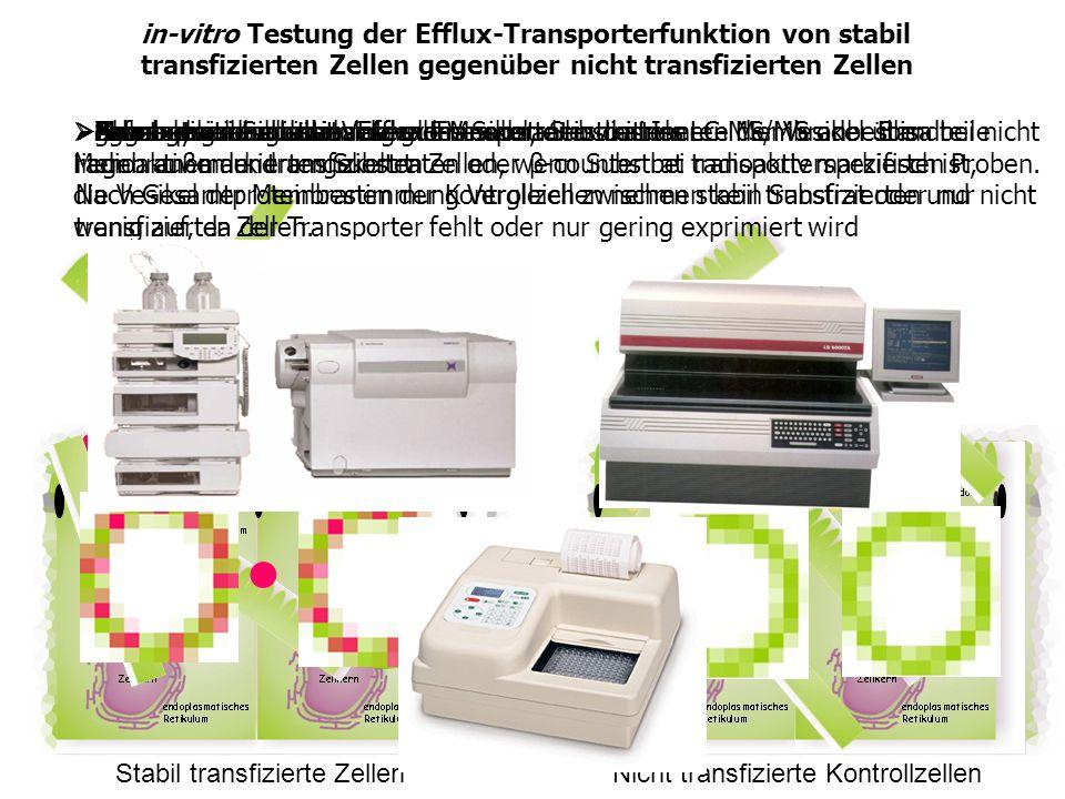 in-vitro Testung der Efflux-Transporterfunktion von stabil transfizierten Zellen gegenüber nicht transfizierten Zellen