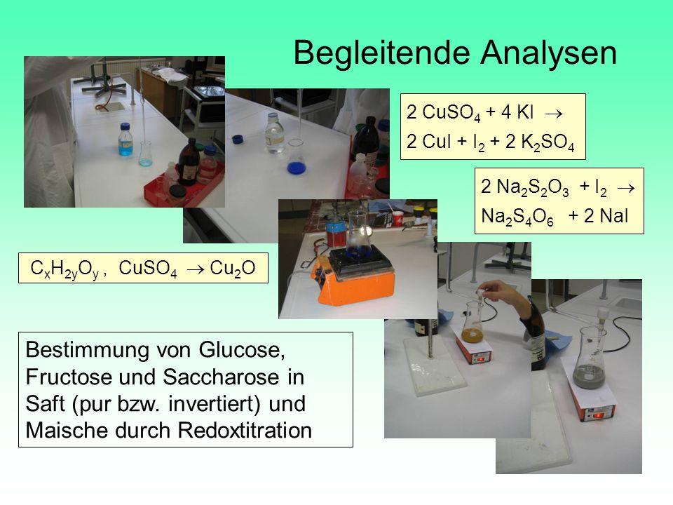 Begleitende Analysen 2 CuSO4 + 4 KI  2 CuI + I2 + 2 K2SO4. 2 Na2S2O3 + I2  Na2S4O6 + 2 NaI.