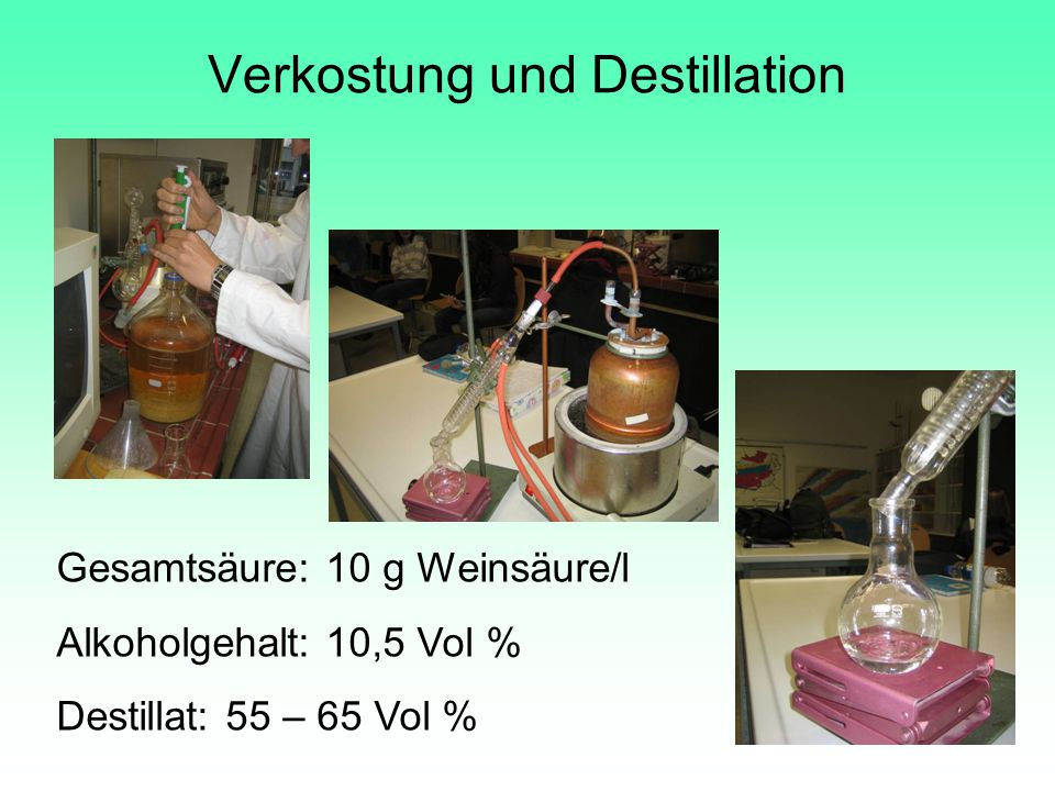 Verkostung und Destillation